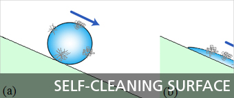banners_wp43_sel-cleaning